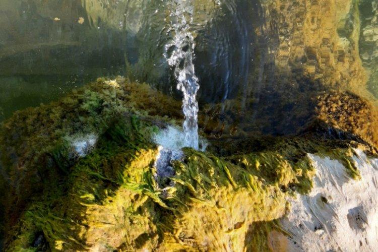 Göl Çekilince Kaynak Pınarlar Ortaya Çıktı