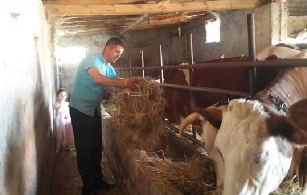 Bir kilo süt bir kilo yem etmiyor, hayvancılık bitiyor !