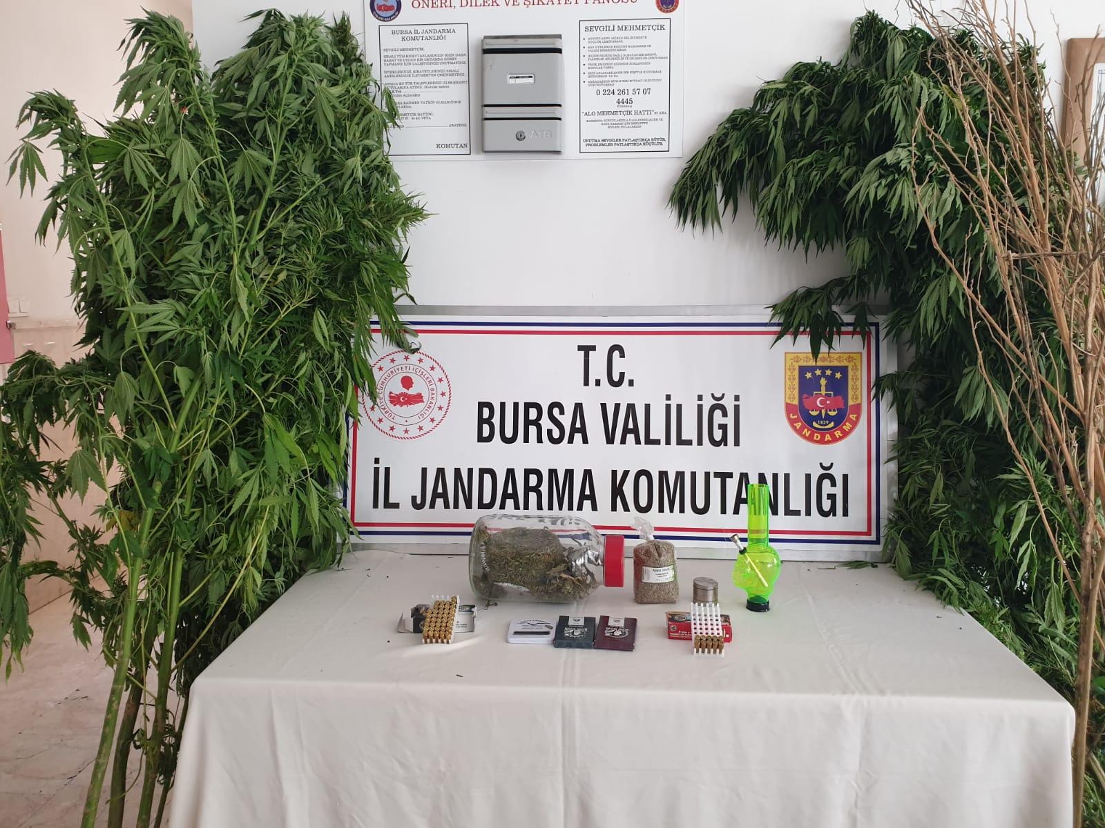 Jandarma'dan Orhangazi'de Uyuşturucuya Bir Darbe Daha!