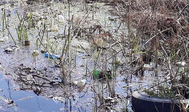 Tarihi Ilıpınar Gölü Çöplüğe Döndü!